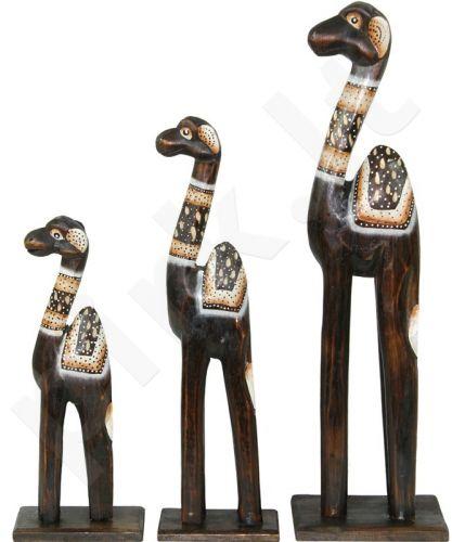 Trys kupranugariai 97052
