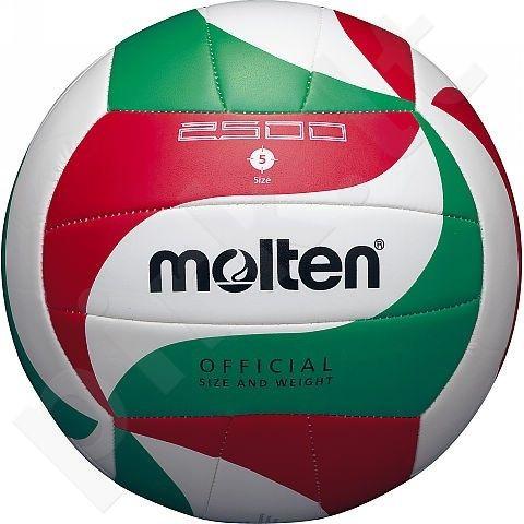 Tinklinio kamuolys training V5M2500 sint. oda 5d.