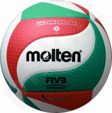 Tinklinio kamuolys competition V5M5000-X FIVB FLISTATE