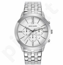 Vyriškas laikrodis Pierre Cardin PC105891F13
