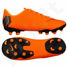 Futbolo bateliai  Nike Mercurial Vapor 12 Academy PS MG JR AH7349-810