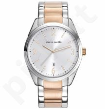 Vyriškas laikrodis Pierre Cardin PC107861F06