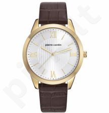 Vyriškas laikrodis Pierre Cardin PC107891F04