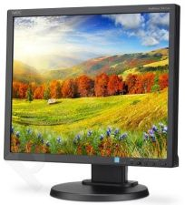 NEC MultiSync LED EA193Mi 19'', IPS, DVI, DP, speakers, black