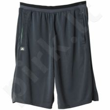 Šortai futbolininkams Adidas Training Shorts Long Length M AC6186
