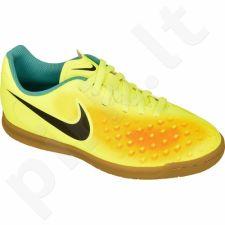 Futbolo bateliai  Nike Magista Ola II IC Jr 844423-708