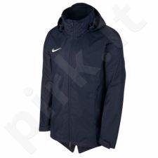 Striukė Nike Academy 18 RN M 893796-451