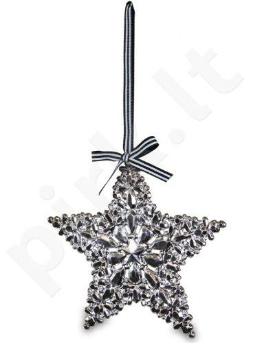 Dekoro detalė Žvaigždė 103469