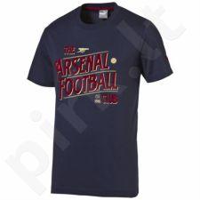 Marškinėliai Puma Arsenal Football Club Graphic Fan Tee Junior 74748802