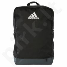 Kuprinė Adidas Tiro 17 Backpack with Ball Net B46132