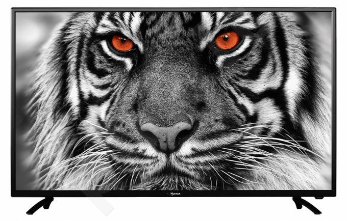 Televizorius TV STAR LED42F1 FULL HD