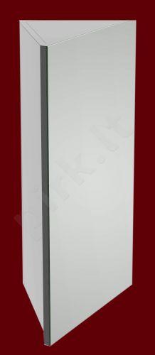 Pakabinama kampinė viršutinė spintelė su veidrodžiu 4001 E40
