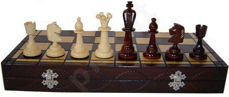 Šachmatai ACE 40.4*20.1*4.8