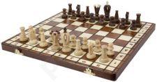 Šachmatai ROYAL 36 36*18*4