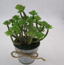 Dirbtinis augalas 102249
