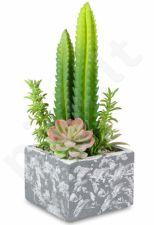 Dirbtinė gėlė Kaktusas 103314