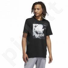 Marškinėliai Adidas Originals PHOTO TEE M DU8320