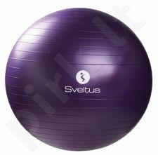Gimnast. kamuolys GYMBALL 75cm violet+pakuotė