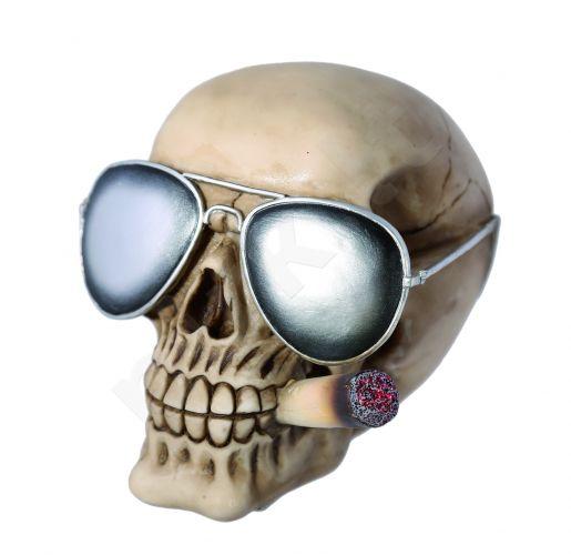 Kaukolės formos taupyklė su akiniais ir suktine