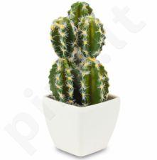 Dirbtinė gėlė Kaktusas 103298