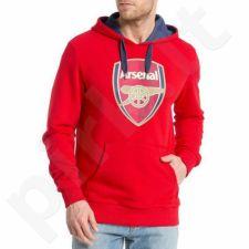 Bliuzonas  Puma Arsenal AFC Fan Hoody-Crest M 747486011