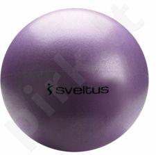 Jogos kamuolys 25cm violet+pakuotė