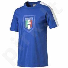 Marškinėliai Puma FIGC Italia Fanwear Badge Tee Junior 74910301