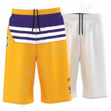 Šortai krepšiniui Adidas Los Angeles Lakers Y Summer Run Junior AJ1989