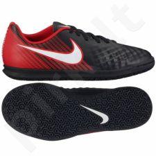 Futbolo bateliai  Nike MagistaX Ola II IC Jr 844423-061