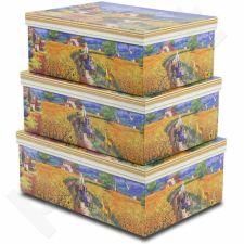 3 dėžučių komplektas 99717