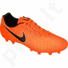 Futbolo bateliai  Nike Magista Onda II FG M 844411-808