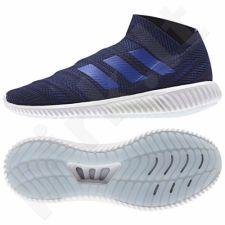 Futbolo bateliai Adidas  Nemeziz 18.1 TR M D98018