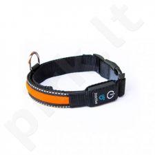 Tractive šuns LED antkaklis TRLCOM M dydžio oranžinis