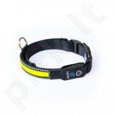 Tractive šuns LED antkaklis TRLCYM M dydžio geltonas