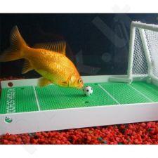 Žuvų dresiravimo komplektas