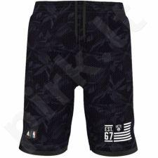 Šortai krepšiniui Adidas Fanwear Brooklyn Nets M AJ1849