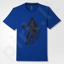 Marškinėliai Adidas New York Knicks GFX Player Tee2 M AA7763