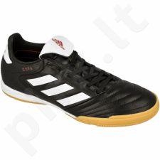 Futbolo bateliai Adidas  Copa 17.3 IN M BB0851
