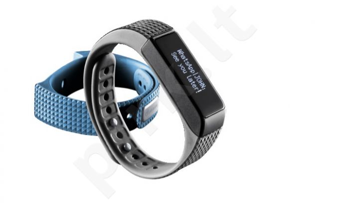 Bluetooth Fitness Tracker EasyFit Touch by Cellular mėlyna