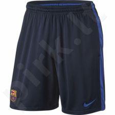 Šortai Nike FC Barcelona Squad Short M 808951-451