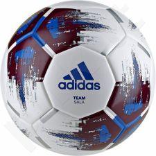 Futbolo kamuolys adidas Team Sala CZ2231