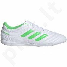 Futbolo bateliai Adidas  Copa 19.4 IN M D98075