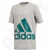 Marškinėliai adidas YB Big Logo Tee Junior DJ1754