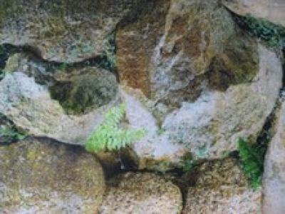 Vienpusis fonas matinis 48 cm (akmenys)