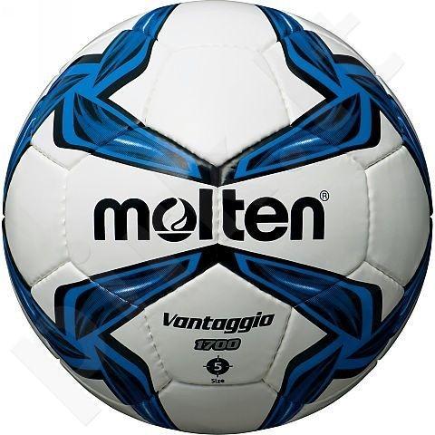 Futbolo kamuolys outdoor leisure F5V1700 white/blue