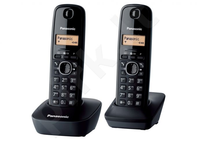 PANASONIC KX-TG1612FXH Telefonas (j)
