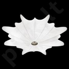 Lubinis šviestuvas EGLO 91883 | CALANDRA