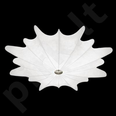 Lubinis šviestuvas EGLO 91884 | CALANDRA