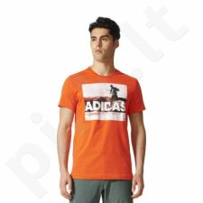Marškinėliai adidas Terrex Trail Running Tee M BR7202