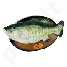 Dainuojanti žuvis